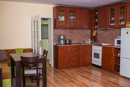 Apartment Basanovich
