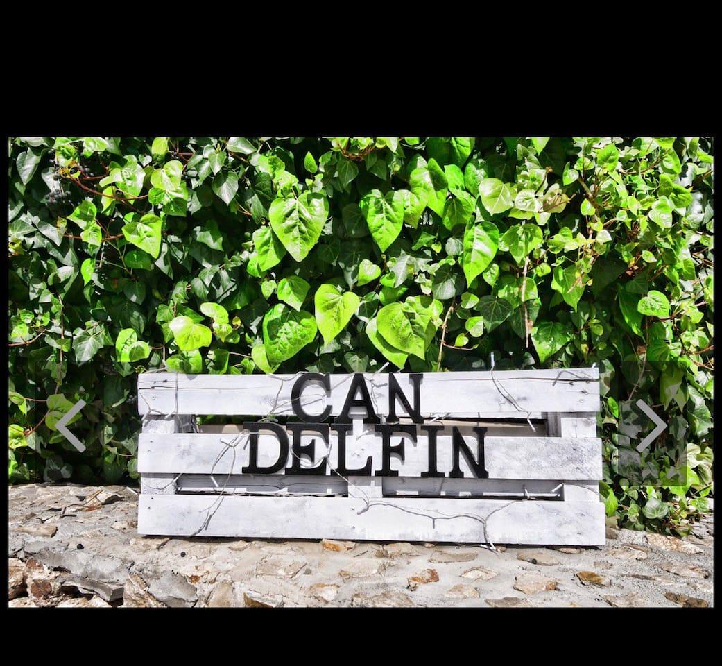 Can Delfin