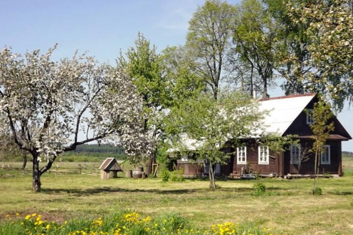 """Агроусадьба """"Засьцянак Скрыплеў"""" - Minsk Region - Gjeste suite"""