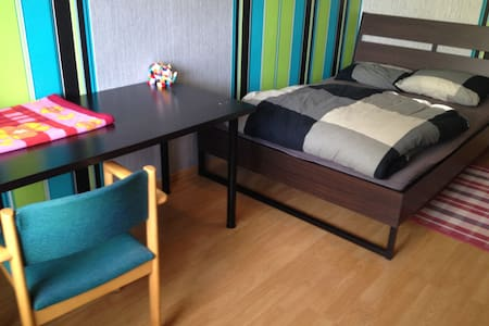 A Cozy room in a big house near to City Center - Delft - 公寓