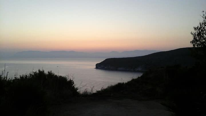 Gli ulivi sul mare a Calabianca