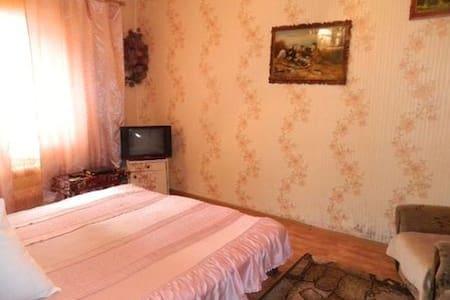 Уютная квартира в центре города - Dnipropetrovs'k - Flat