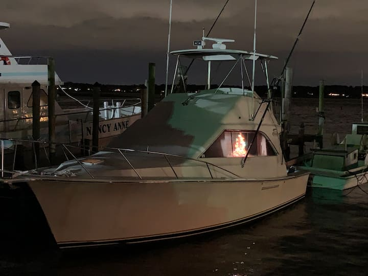 Ocean Commotion : 35' Sport-fish Mini Yacht