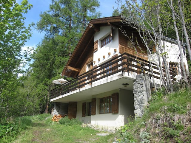 Comfortable  Chalet in Loetschental valley
