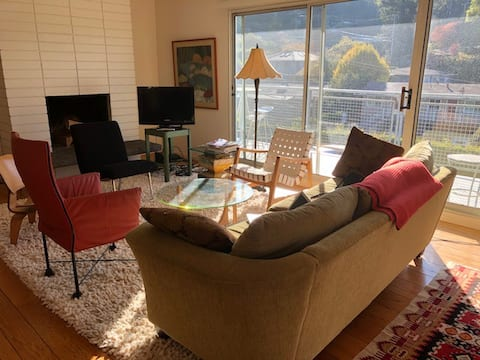 4 Month Lease: Sunny 2-Bedroom Mill Valley Apt