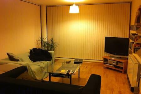 3 Bedroom Penthouse Apartment - 都柏林 - 公寓
