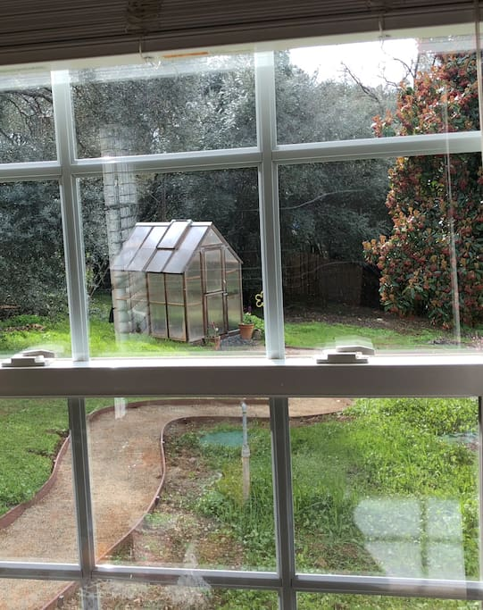 The view of the backyard and greenhouse.