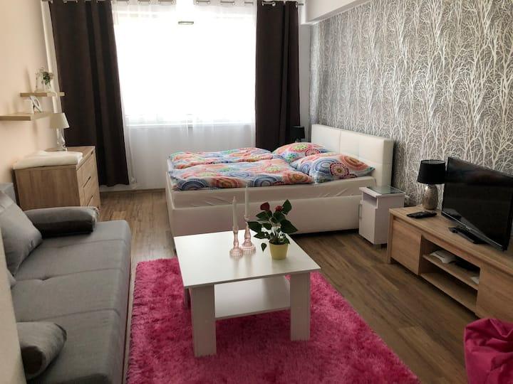 Apartmány pod Poludnicou , Apartmán č.2