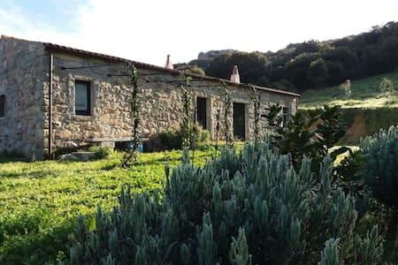 """Sardegna, Gallura - Stazzo in pietra """"La Casedda"""" - Luogosanto - Rumah"""