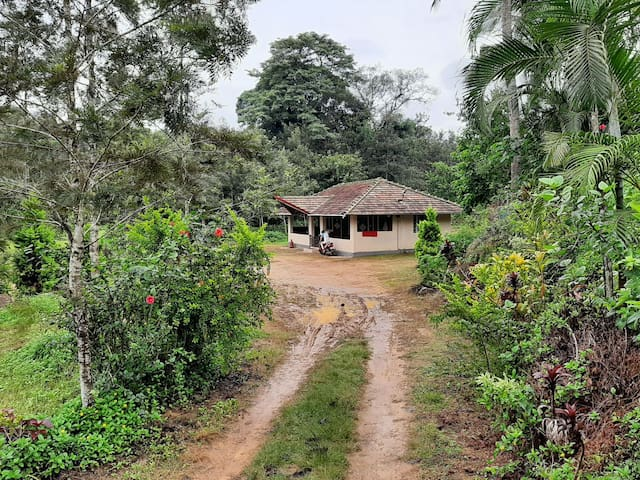 Independent Village Homestay, 2 rooms for 8people