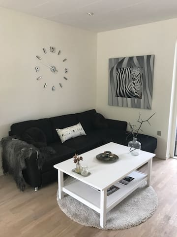Cozy apartment 50 sqm for rent at Roskilde Fjord.