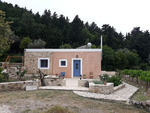 Traditional Greek House in Olive farm Sea view