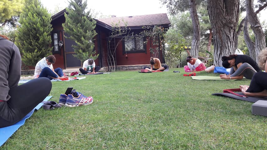 Yoga (her Çarşamba saat 10 da)