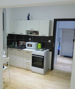 Whole equipped apartment in a CITY CENTER of Brno - Brno - Appartement