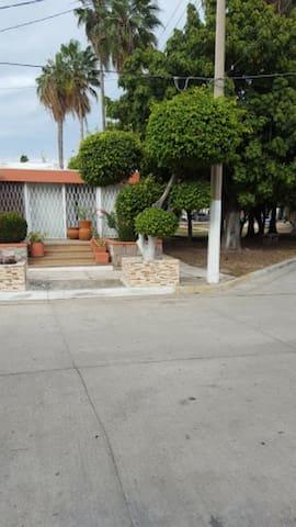 Cozy Studio 4 blocks from beach in Golden Zone! - Mazatlán - Apartment