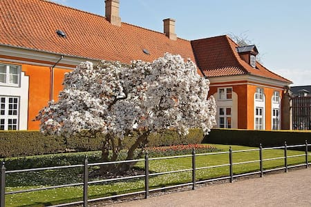 Great place great location - Frederiksberg - Apartment