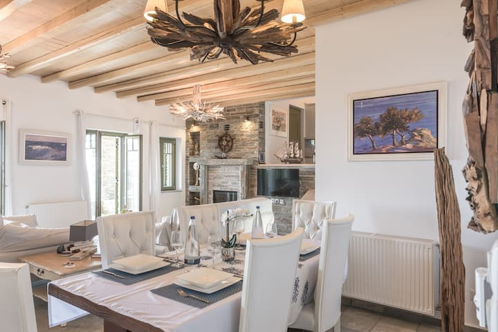 Blue Reflection Villa Andros