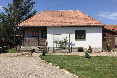 Fogad Lak  Welcome cottage  Ilieni 180 sz.