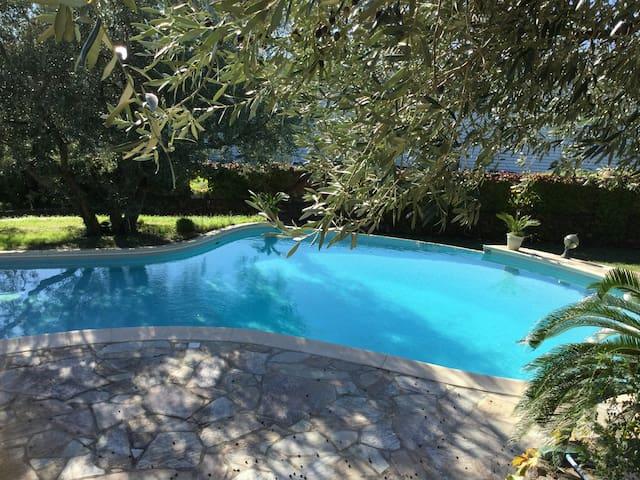 Appartement type t3 avec piscine privée - Borgo - Apartemen