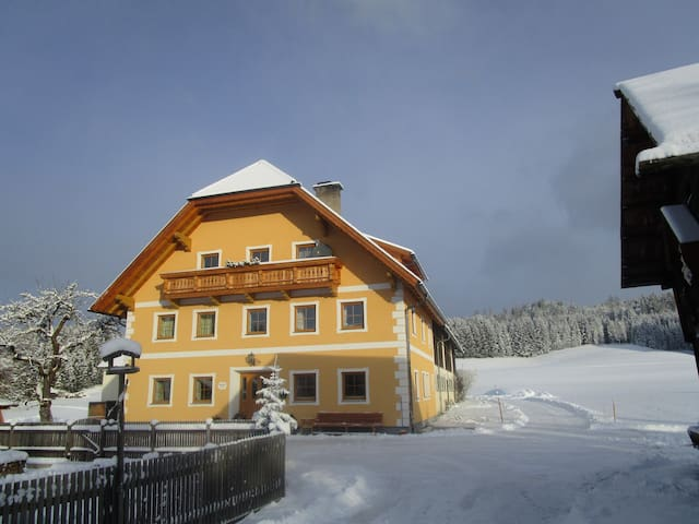 Planitzerhof- Urlaub in der Natur! - Tamsweg - Bed & Breakfast