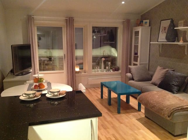 2 room apartment with loft!