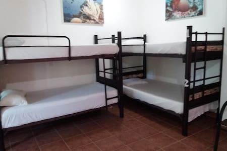 Loft 10 Hostel - Playa del Carmen - Dorm