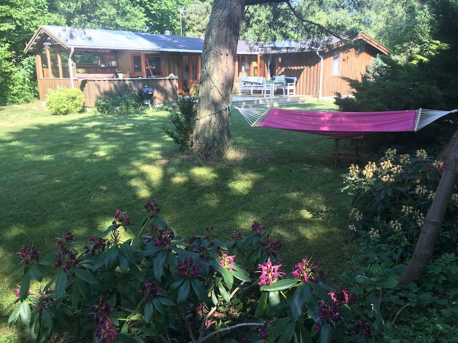 Hammock in the front end of the garden