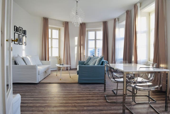 beautiful bright apartment in the center of Vienna