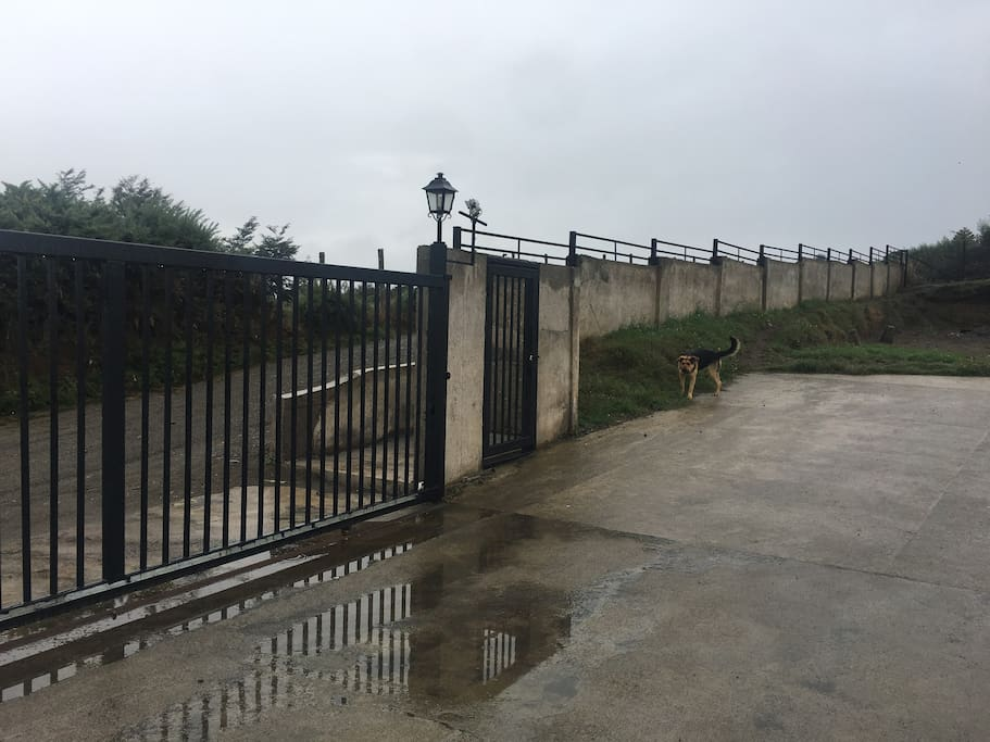 Entrada al recinto con control remoto y portón de acceso, los perros tienen su Canil y no molestan en nada.