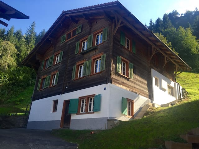 Traditional Swiss House in Nature - Tavanasa - บ้าน