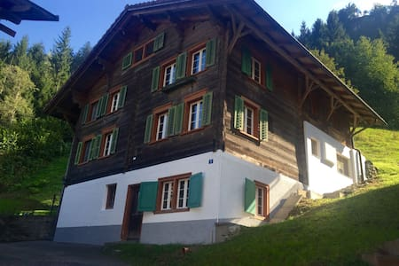 Traditional Swiss House in Nature - Tavanasa