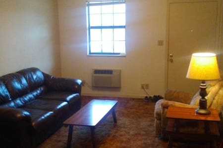 Affordable Couch in Comfy Apartment - Clarksville - Huoneisto