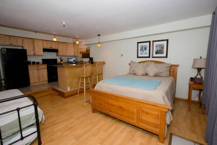 Girdwood Mountainside Condo at the base of Alyeska