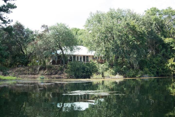 Camellia Hidden Lake