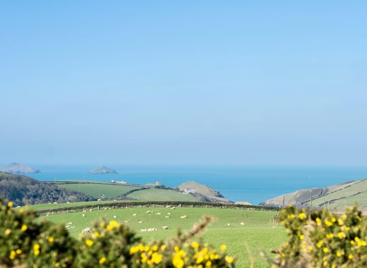 The salty shepherds hut Cornwall.
