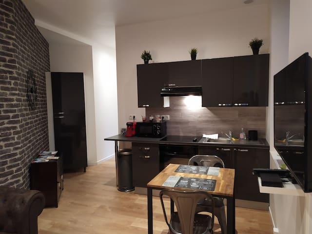 Appartement rénové hypercentre de Brest