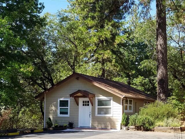 Ponderosa Pines Cottage in Sierra Nevada Foothills