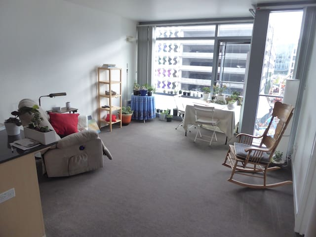 Entire Modern Apt.  UCSF Mission Bay