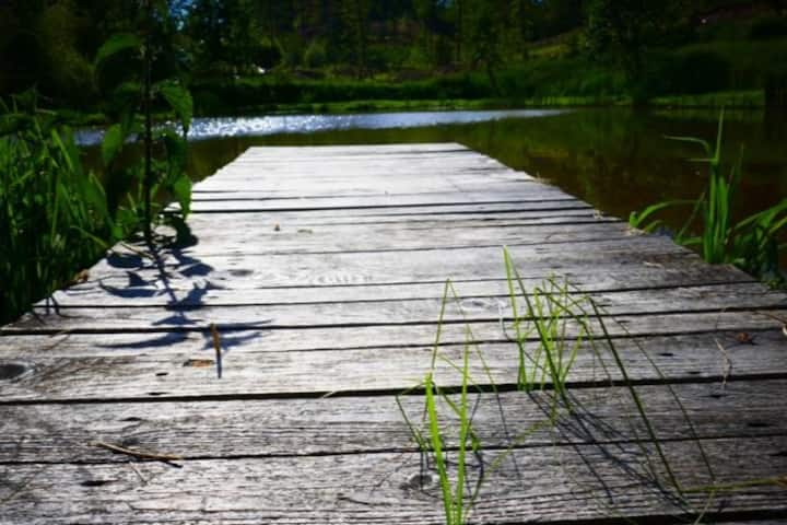 Landhaus am Teich