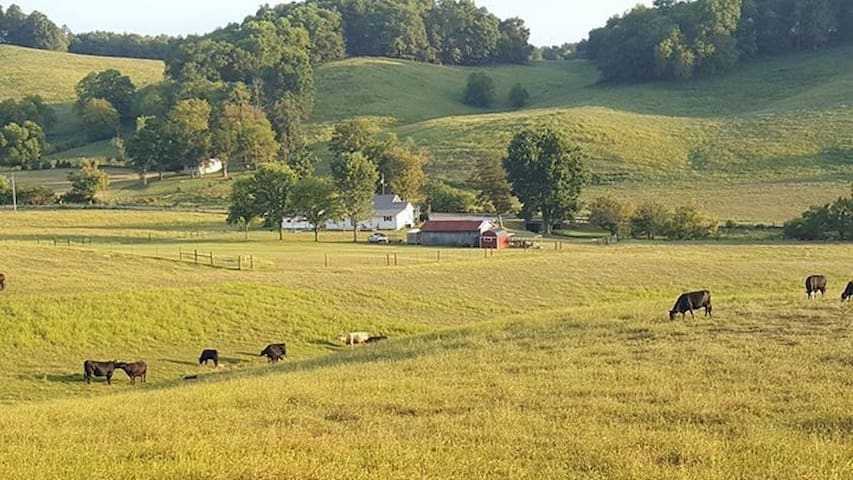 Country Cottage in rolling hills! - Shelbyville - Bed & Breakfast