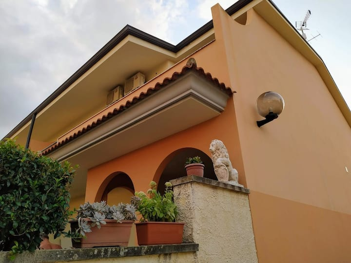 Sofia-house