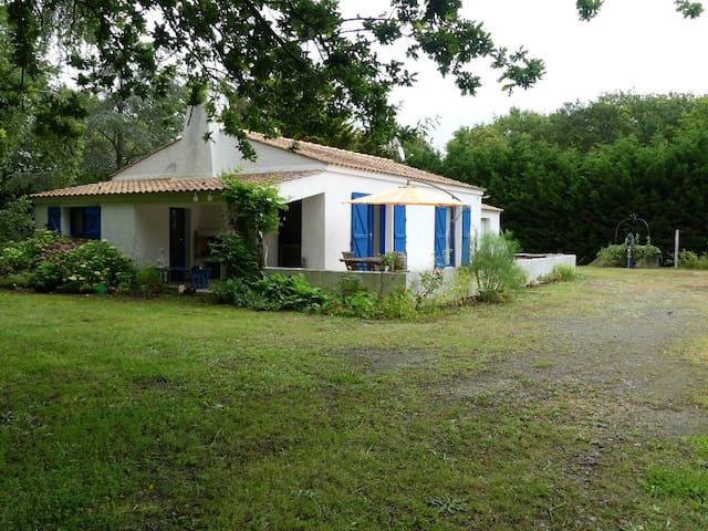 Petite maison dans son écrin de verdure