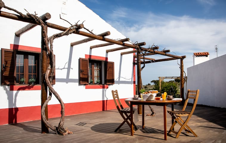 Aleixo's guest house: entire villa in Alentejo
