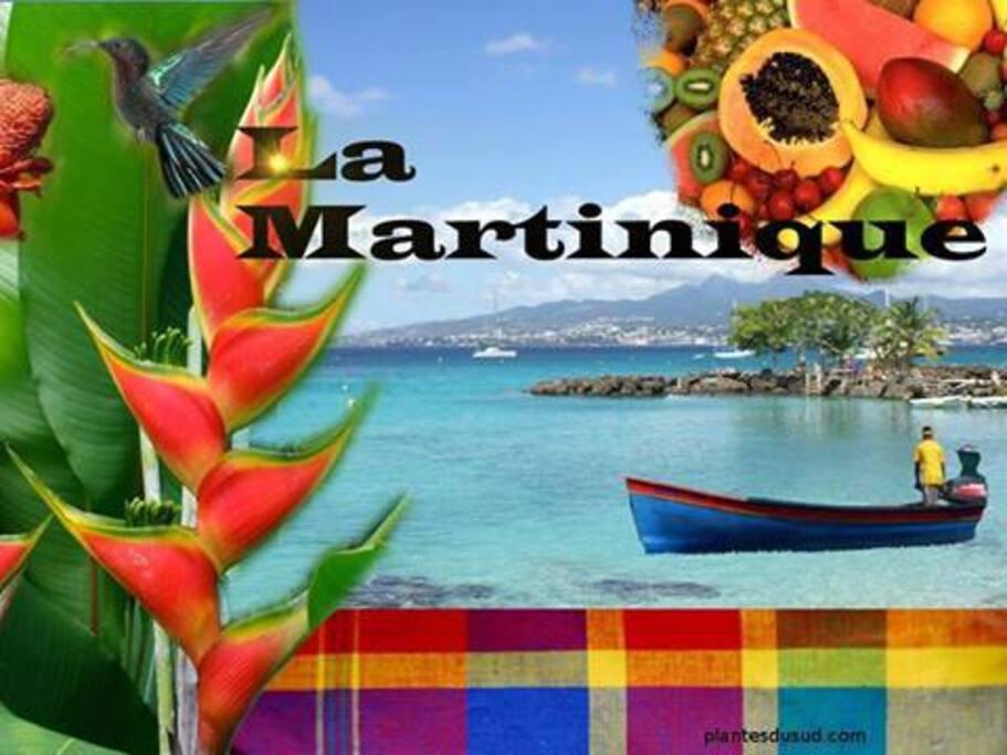 Couleurs et spécialités de la Martinique