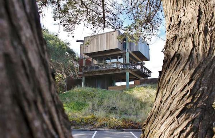 The Tree House - Watsonville - House