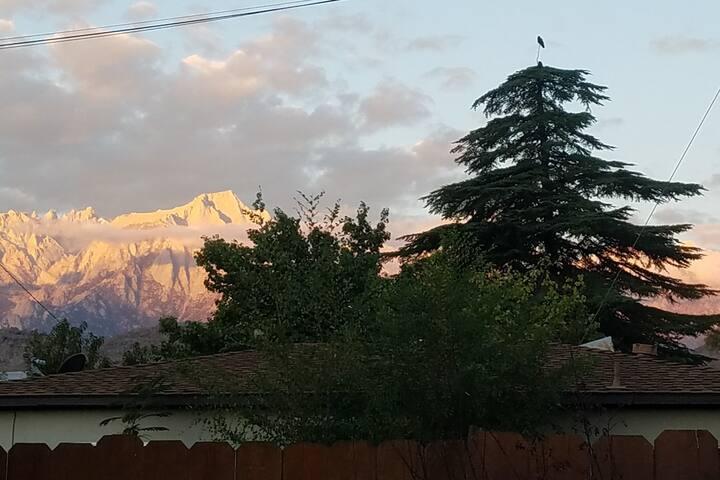 Sunrise from the backyard