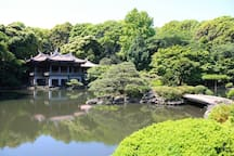 You can walk through authentic Japanese garden. Just a 5 min walk away from the house.