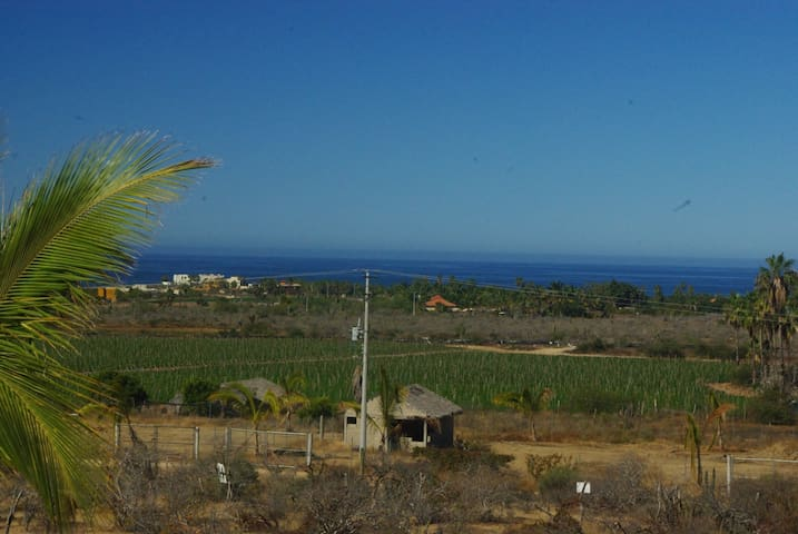 Daytime view of the Pacific and the farmers fields.
