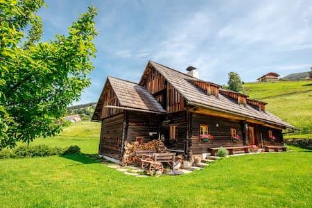 Napoleonvilla Holiday Home Katschberg