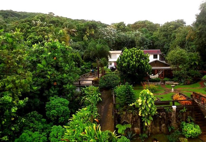 El Yunque Rainforest, Chalet @Rainforest Inn